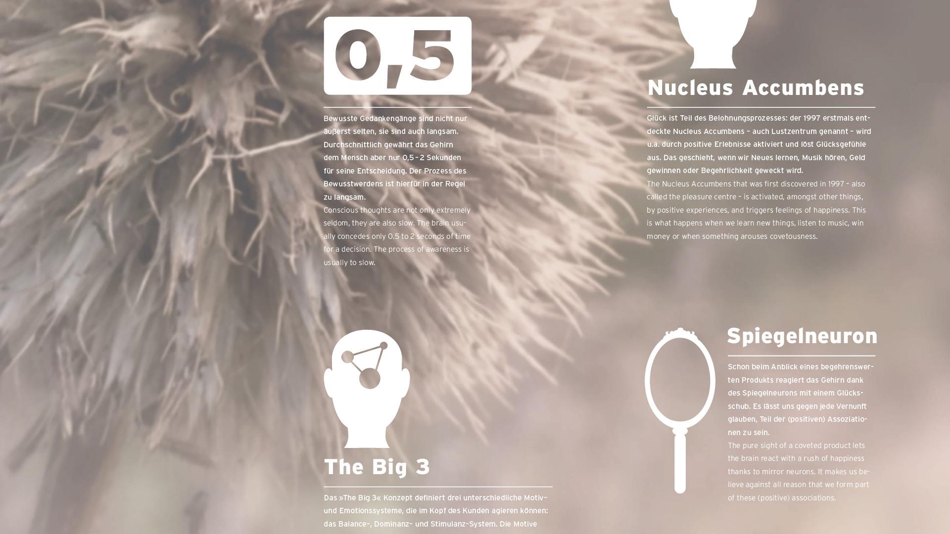 Dart inszeniert die Kommunikation der Dart Design Gruppe für das Radar Magazin 2014